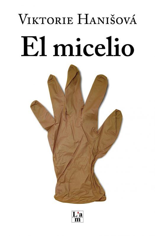 El micelio